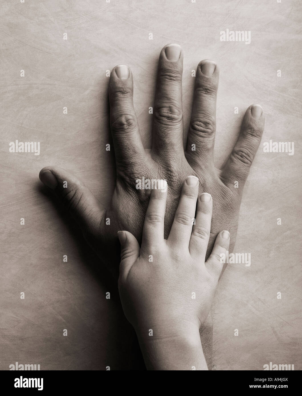 father and sons hand - Stock Image
