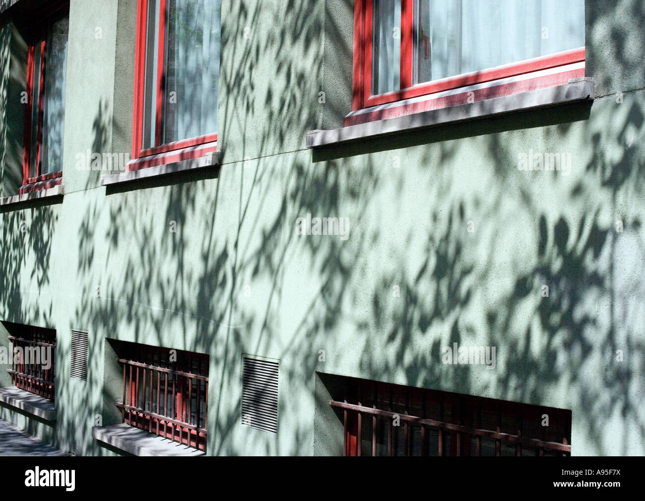 Apartment building with shadows of vegetation on facade, close-up - Stock Image