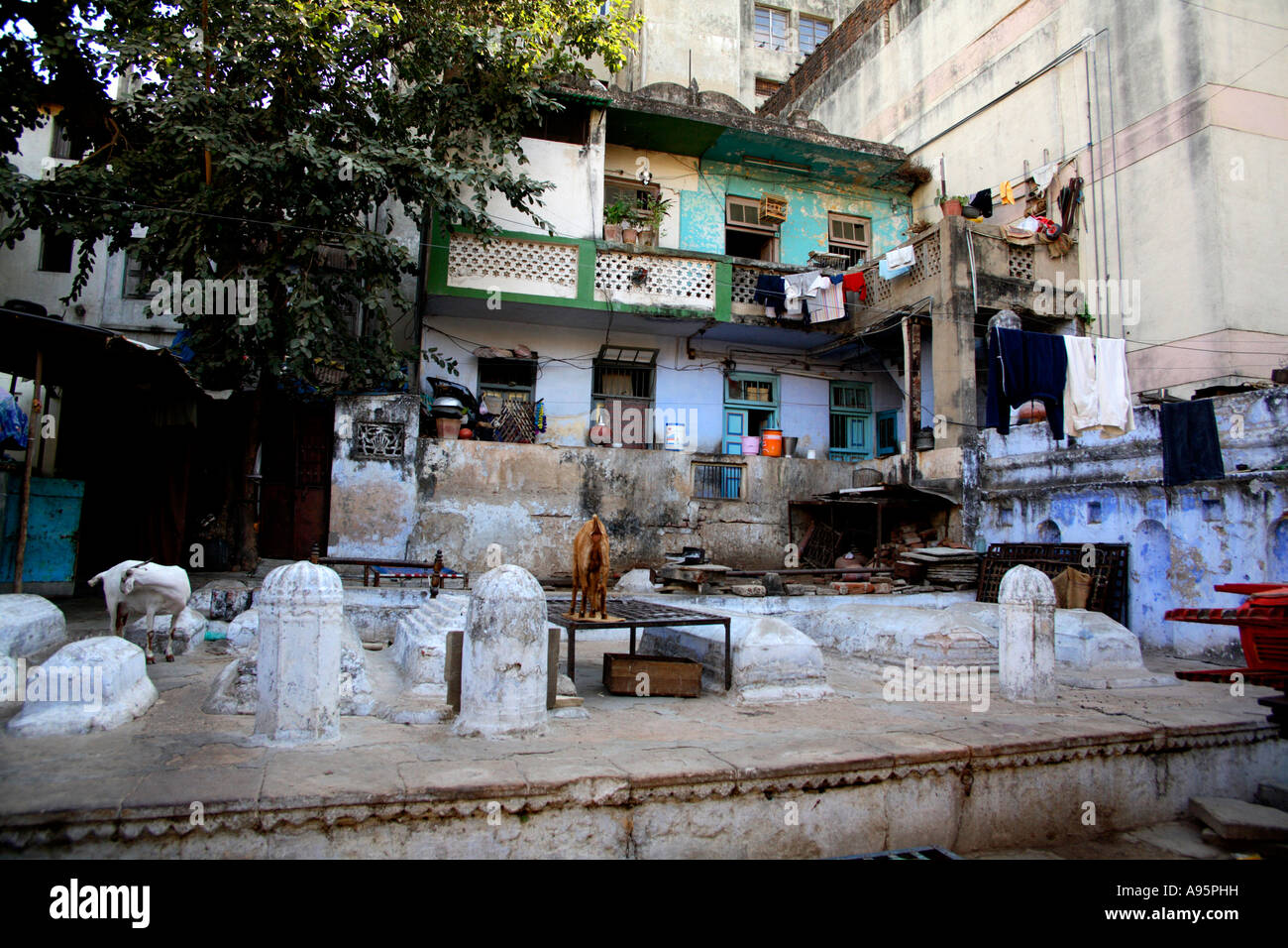 Houses in the old city of Ahmedabad, Gujarat, India - Stock Image