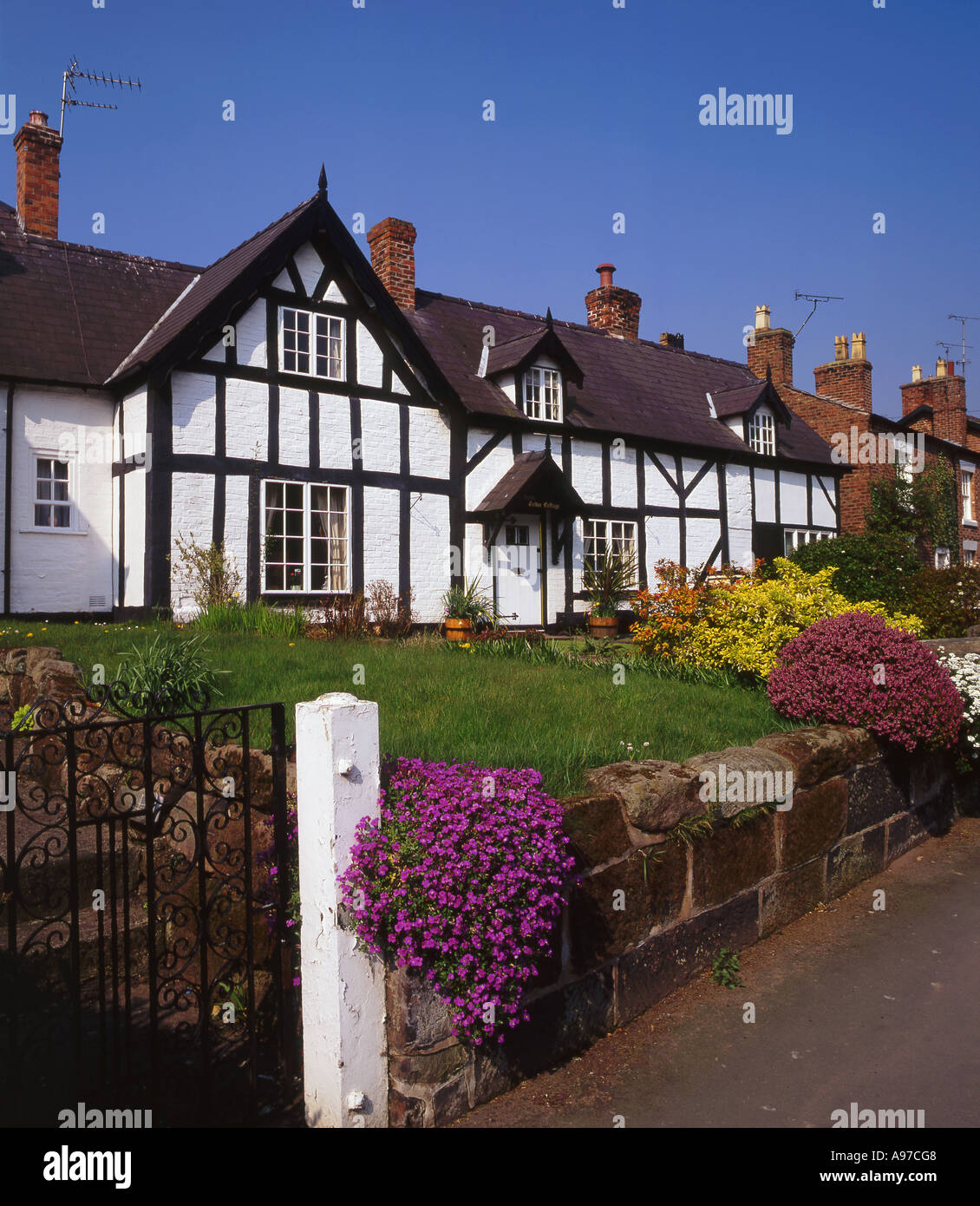 Tudor Cottage in Spring, Village of Tattenall, Central Cheshire, England, UK - Stock Image