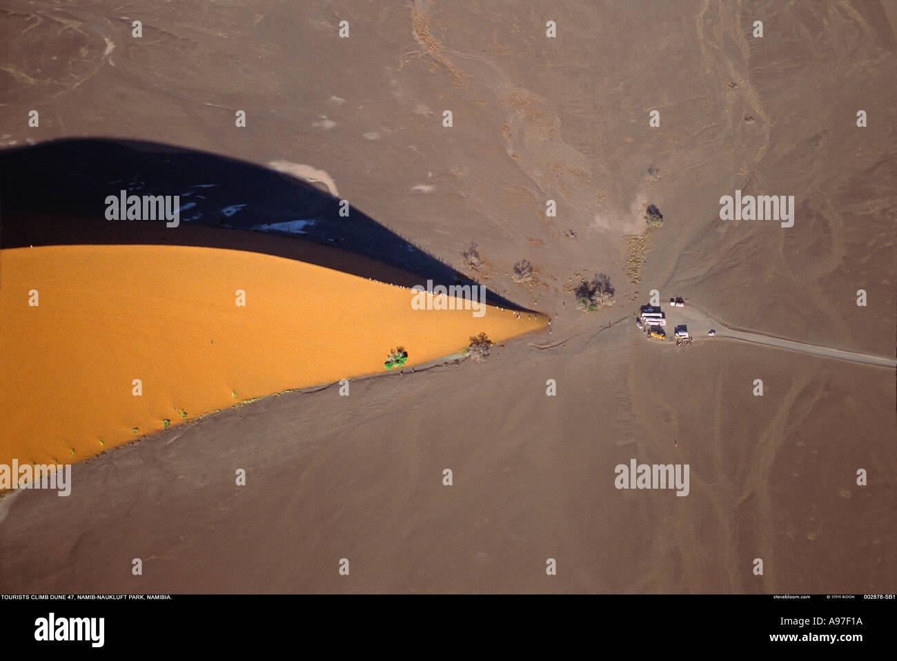 Tourists climb Dune 47 Namib Nauklift Park Namibia - Stock Image