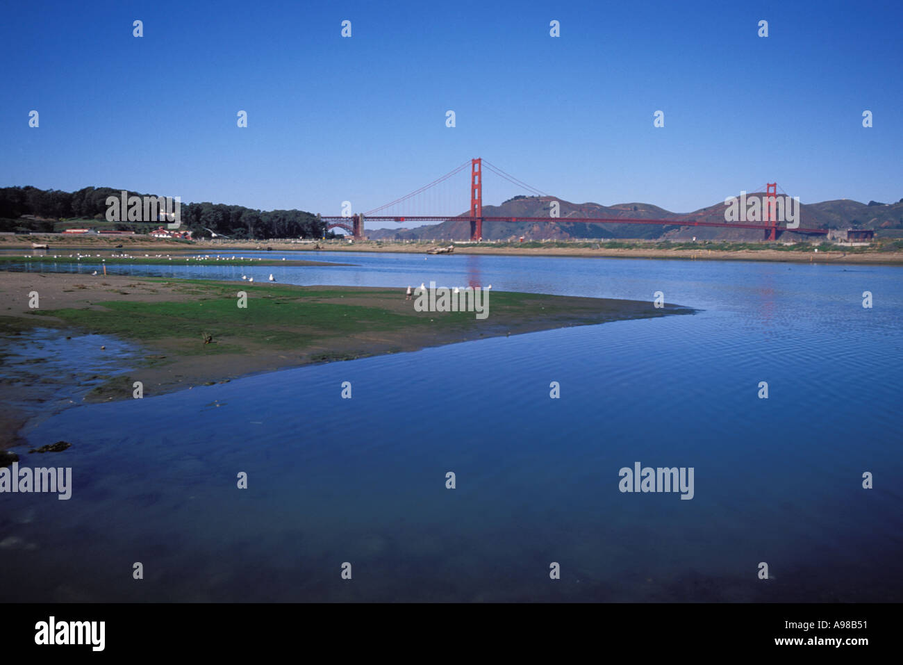California, San Francisco, GGNRA, Tidal marsh, Crissy Field - Stock Image