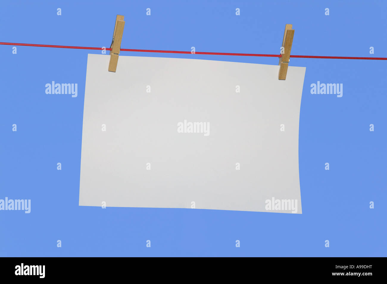 Blank paper on a washing line - Stock Image