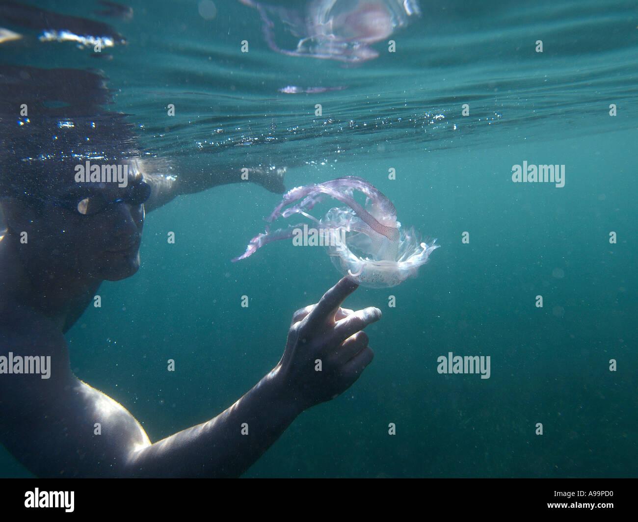 Jellyfish and swimmer Stock Photo