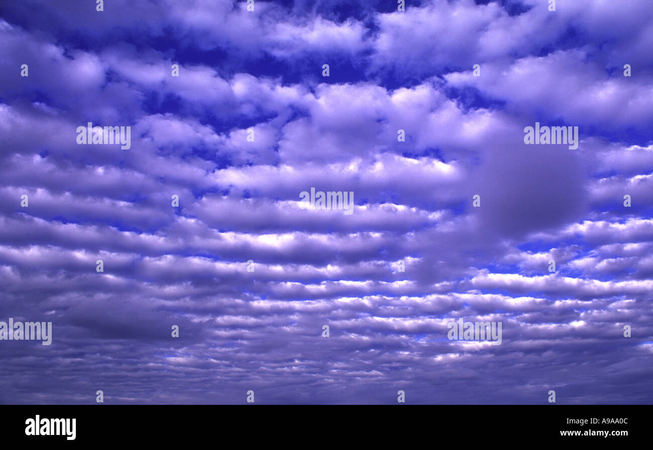 fluffy layered clouds www galleriesepifanoff com - Stock Image