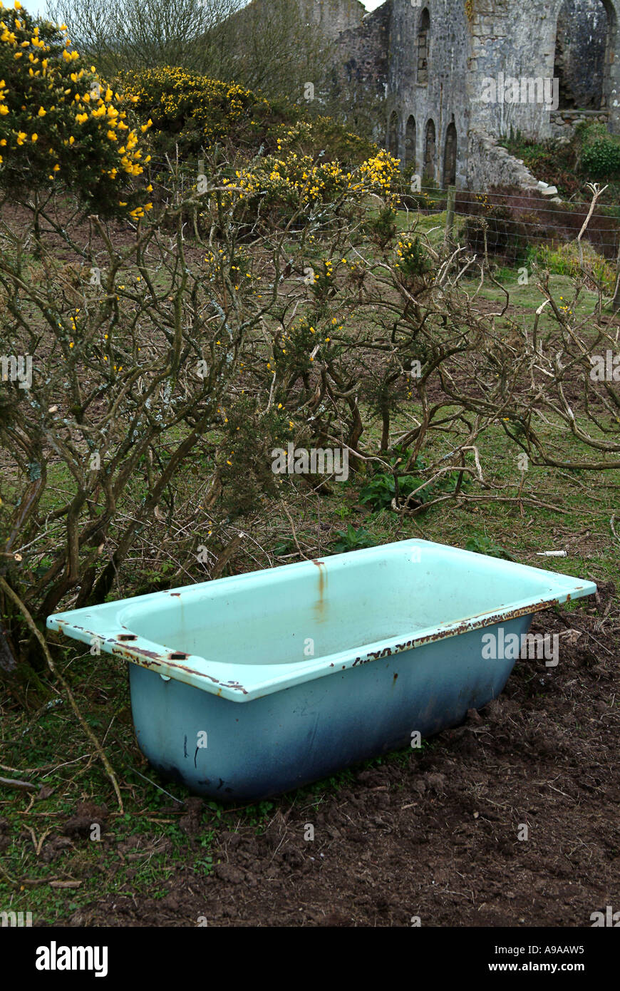 Bathtub in the countryside used to give water to the cattle Stock ...