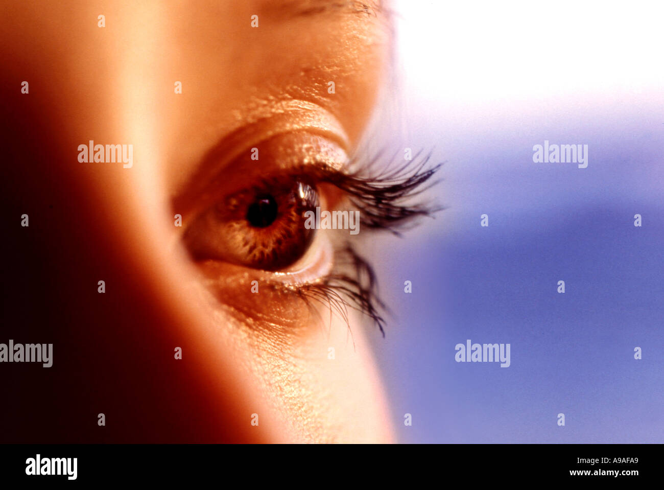close up of woman s eye - Stock Image