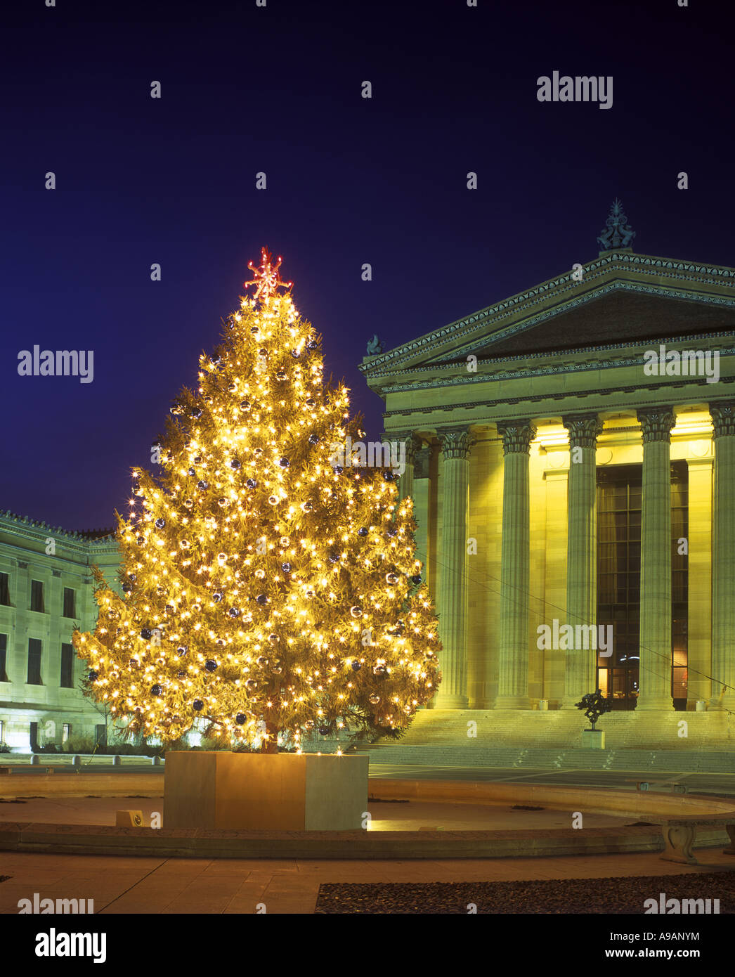 philadelphia christmas tree stock photos philadelphia christmas