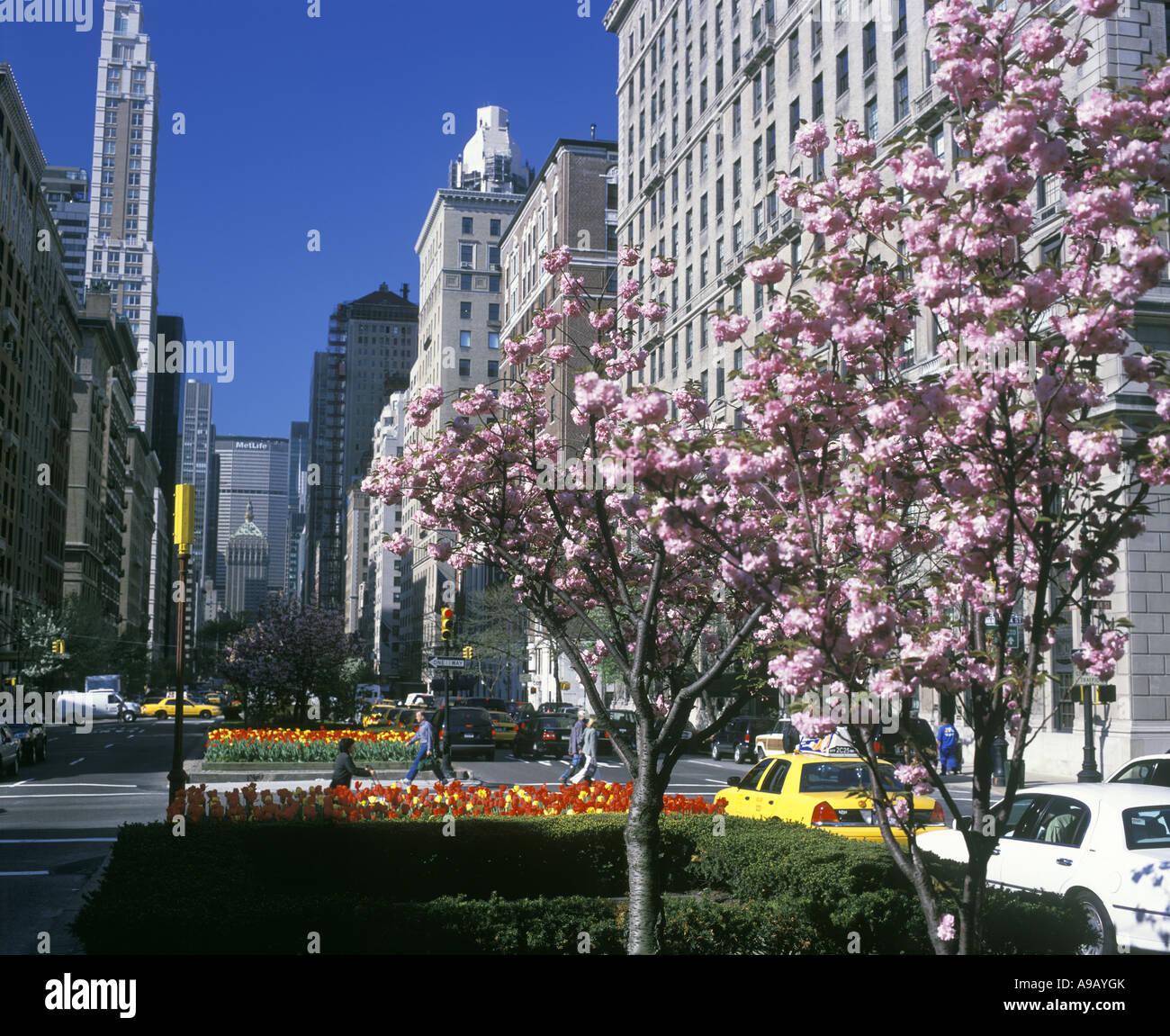 City Manhattan: SPRING STREET SCENE PARK AVENUE MANHATTAN NEW YORK CITY