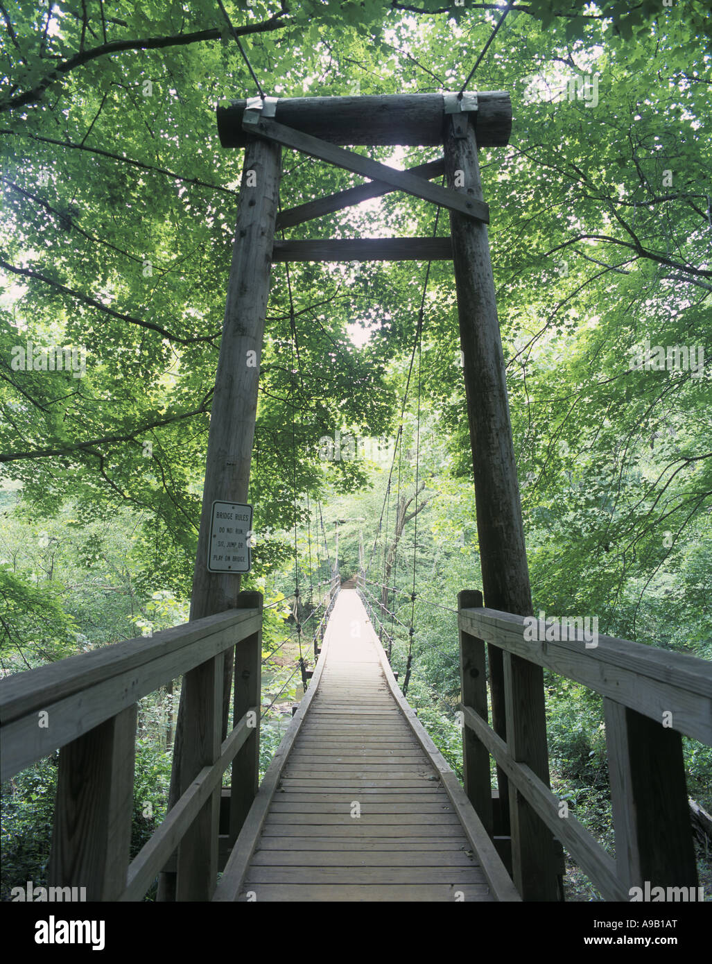 FEWS FORD SUSPENSION WOODEN SUSPENSION FOOTBRIDGE ENO STATE PARK DURHAM NORTH CAROLINA USA - Stock Image