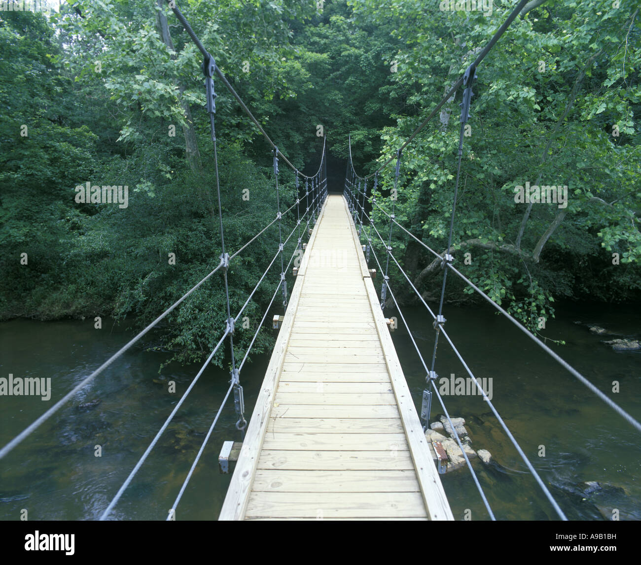 FEWS FORD SUSPENSION FOOTBRIDGE ENO STATE PARK DURHAM NORTH CAROLINA USA - Stock Image