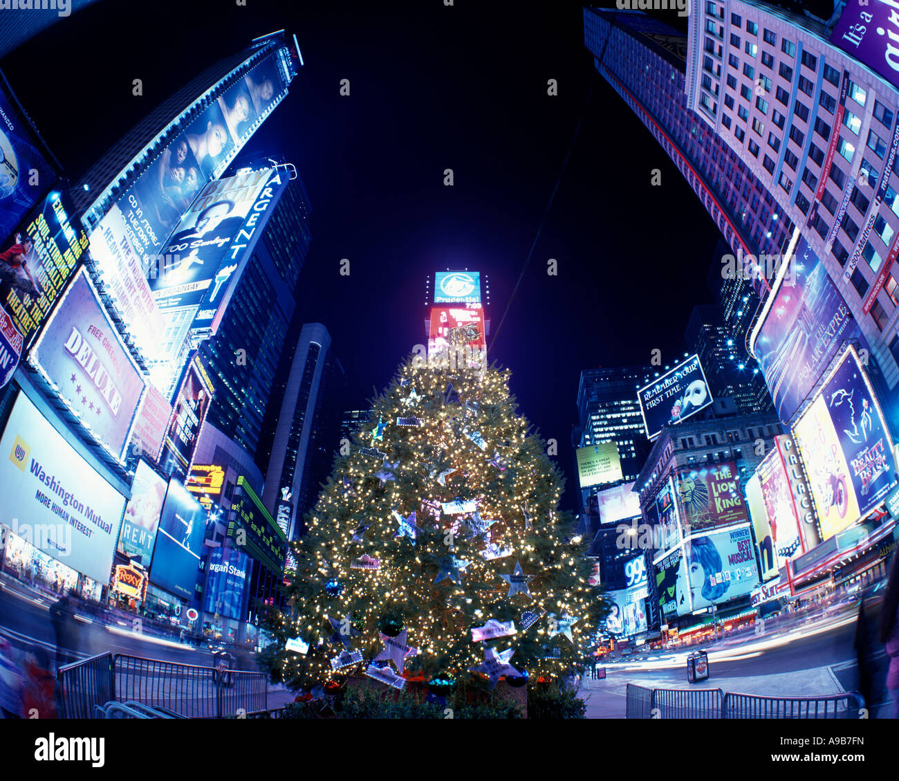 Christmas Tree In Ny: CHRISTMAS TREE LIGHTS TIMES SQUARE MIDTOWN MANHATTAN NEW