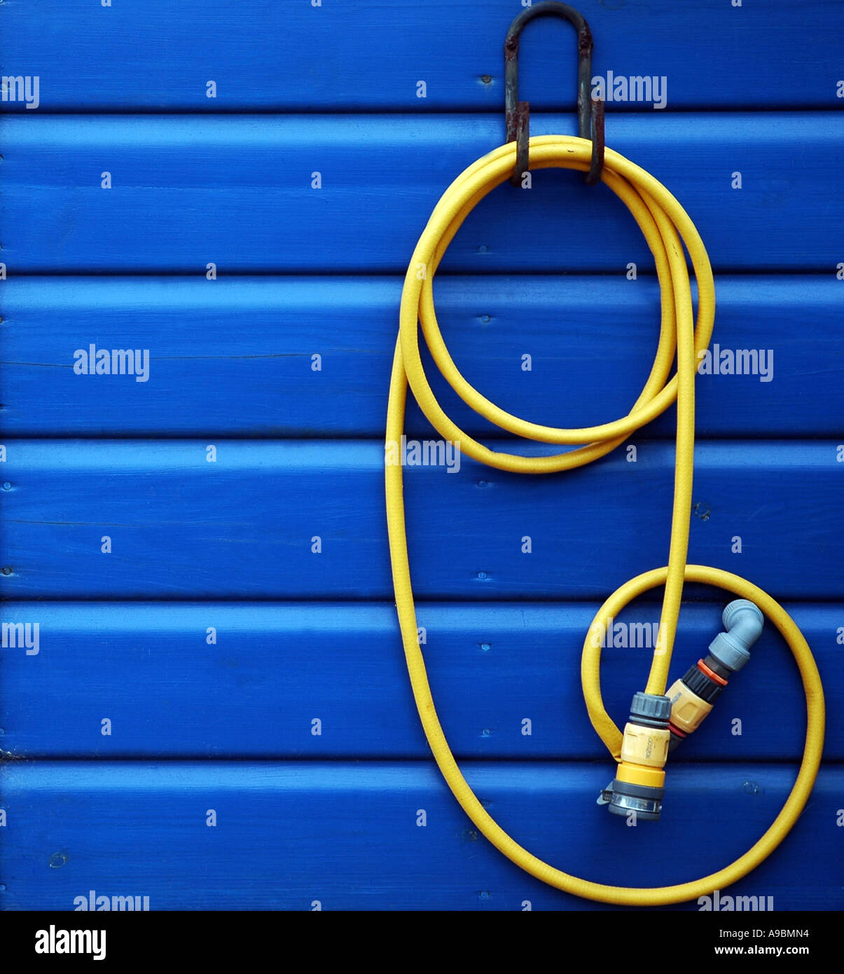 Curled yellow hosepipe hanging on blue wooden beach hut - Stock Image
