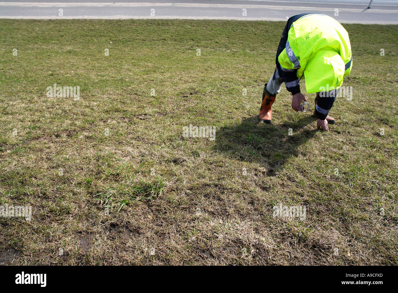 Worker put poison to the holes in the grassland to kill rats and mouses Finkerwerder Hamburg Germany Stock Photo