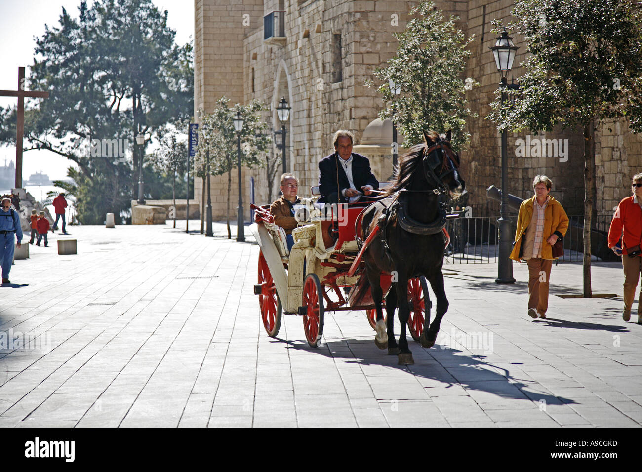 Tourist sightseeing from a pony and trap near La Seu the cathedral at Palma Mallorca - Stock Image