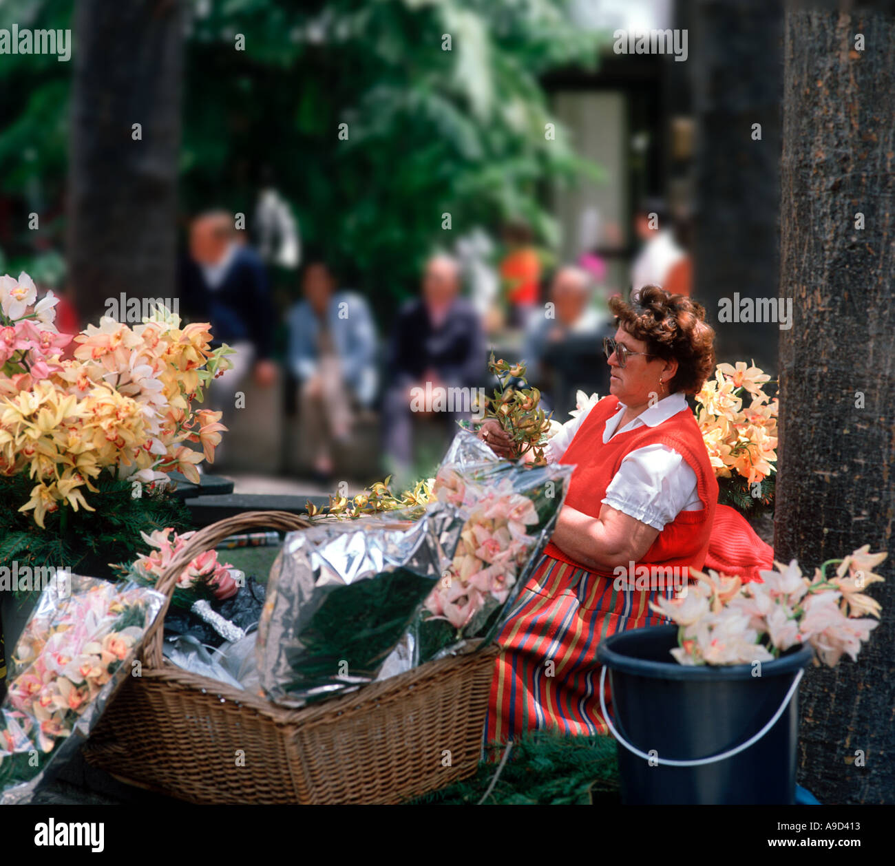 Traditional flower seller outside the Cathedral, Funchal, Madeira, Portugal - Stock Image