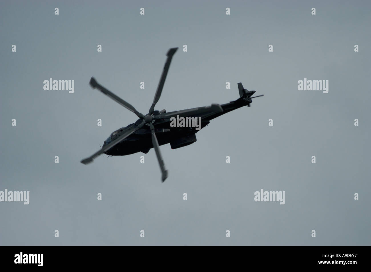 RAF Merlin Helicopter - Stock Image