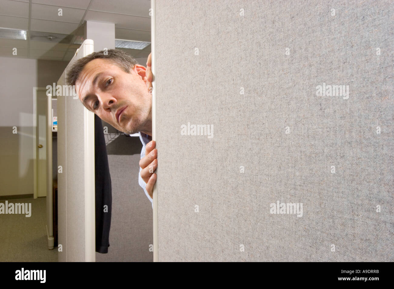 images of an office cartoon man peeking around the corner of an office cubicle stock photo
