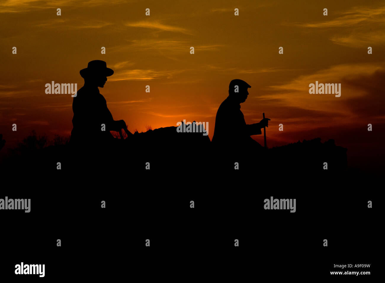 farmer europe stock photos farmer europe stock images alamy. Black Bedroom Furniture Sets. Home Design Ideas