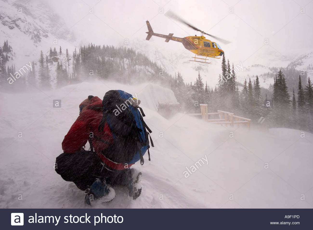 Skier hunkering down in the jetwash from the heli Ice Creek Lodge Valhalla Mountains British Columbia Canada - Stock Image