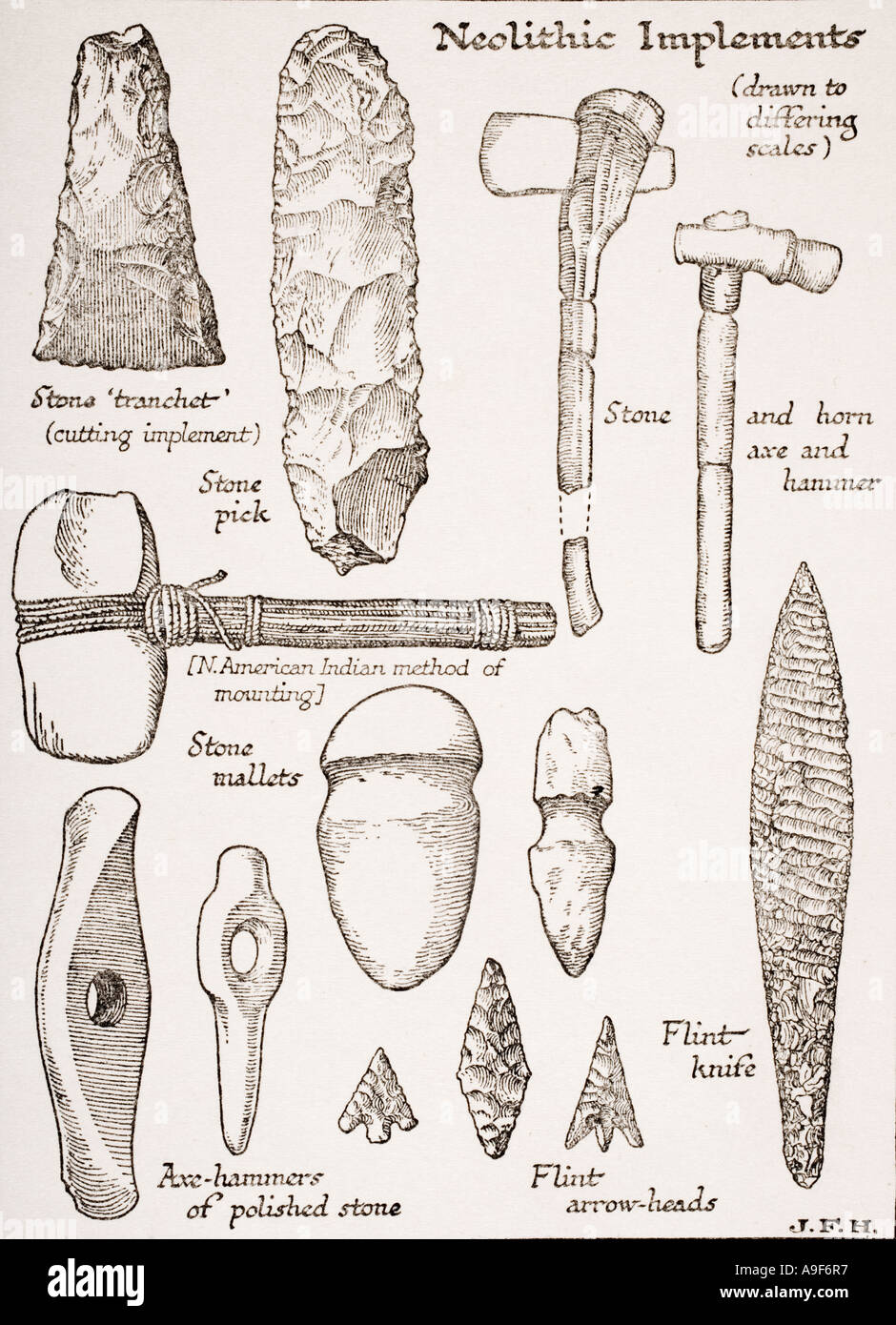 Neolithic Implements.  Weapons, tools. - Stock Image