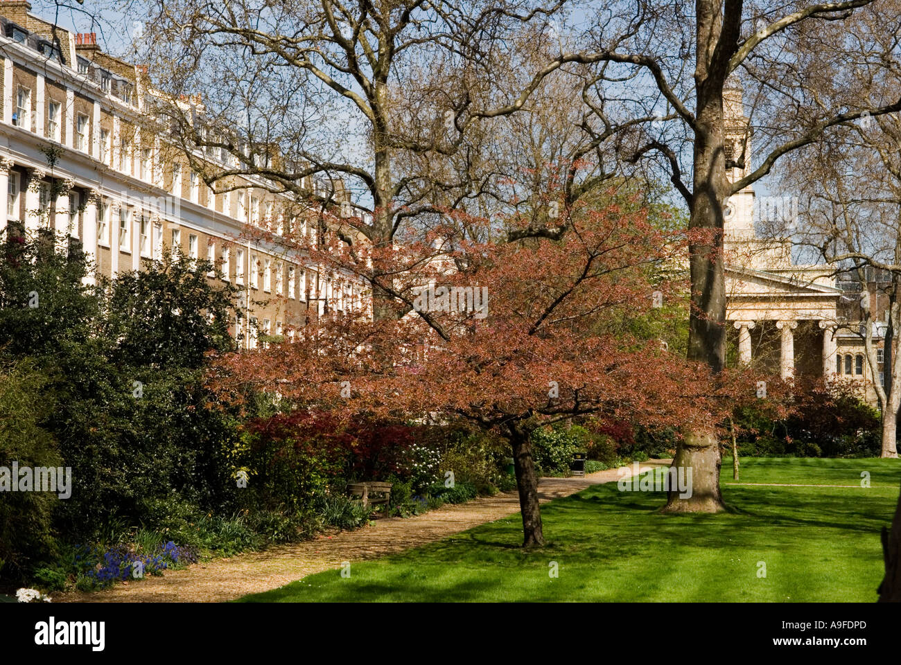 Eaton Square, private gardens. St Peters Church, Belgravia. City of  Westminster London SW1. England. HOMER SYKES Stock Photo