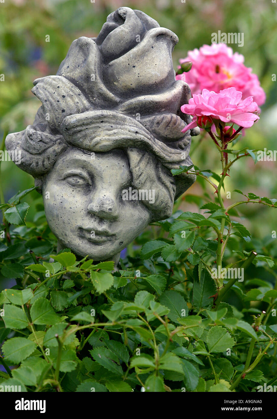 garden decoration, statue besides wild rose - Stock Image
