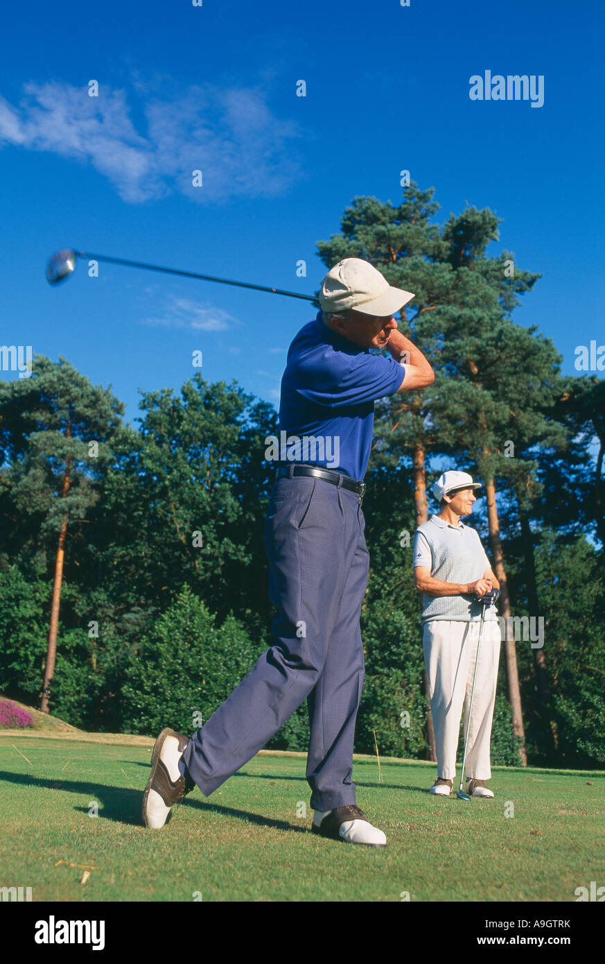 golfers model released teeing off Surrey England UK - Stock Image