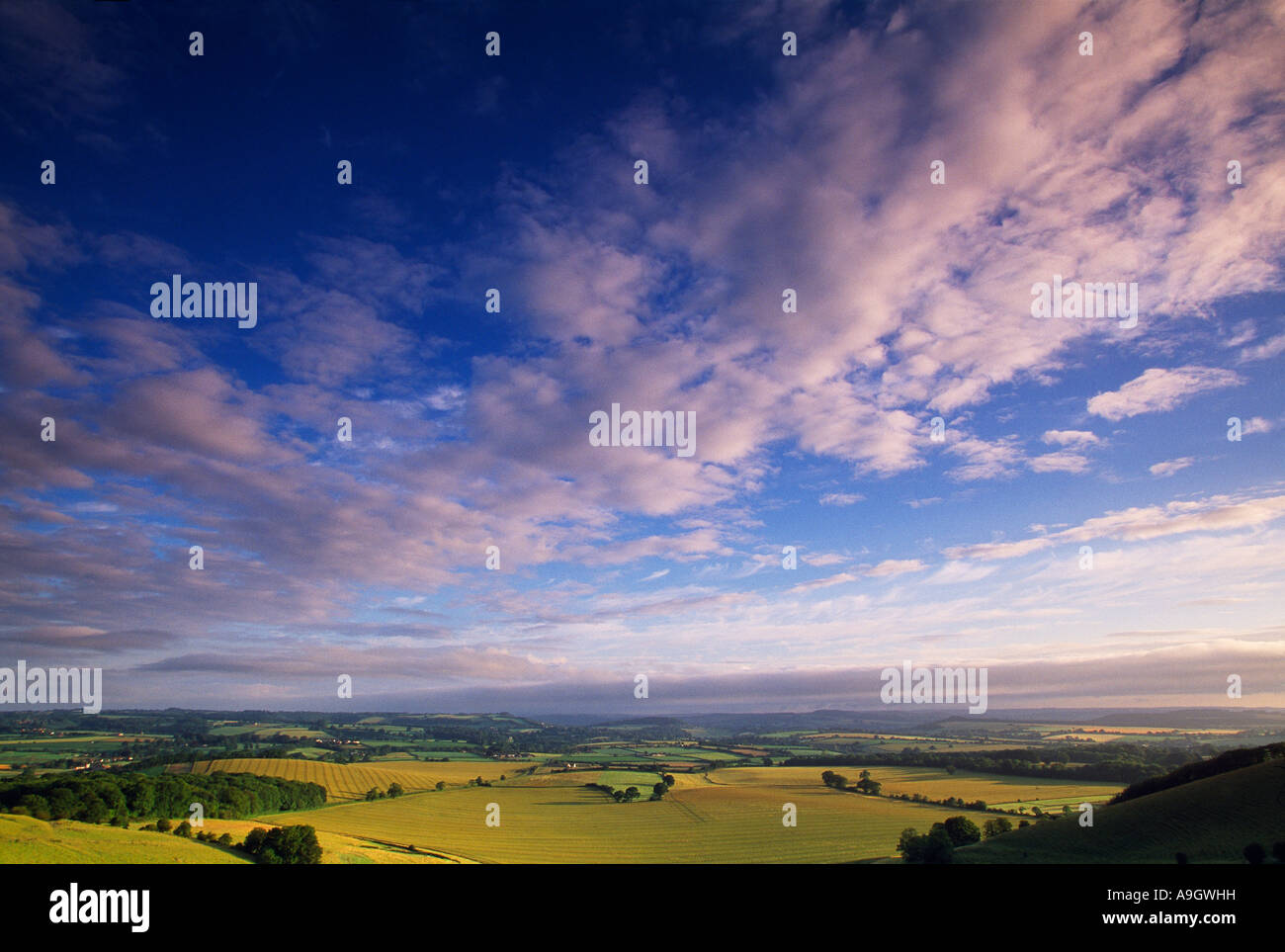 a big sky over Melbury Down nr Shaftesbury Wiltshire UK - Stock Image