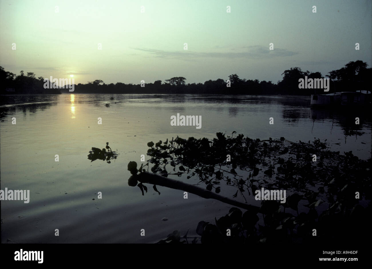 Rivers American Sth River Amazon Brazil sunrise set - Stock Image