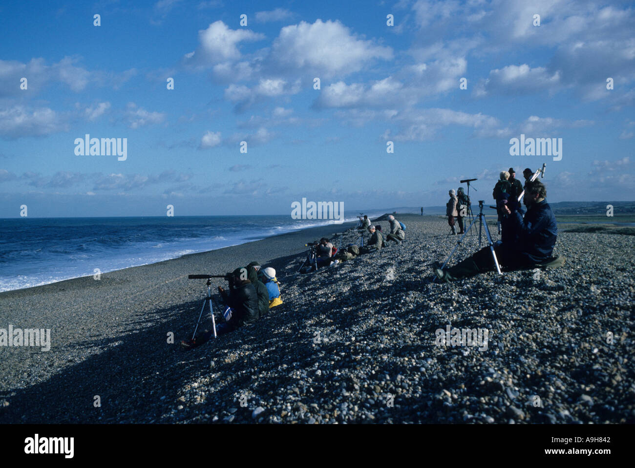 Birdwatching Sea watchers counting birds Cley Norfolk England October - Stock Image