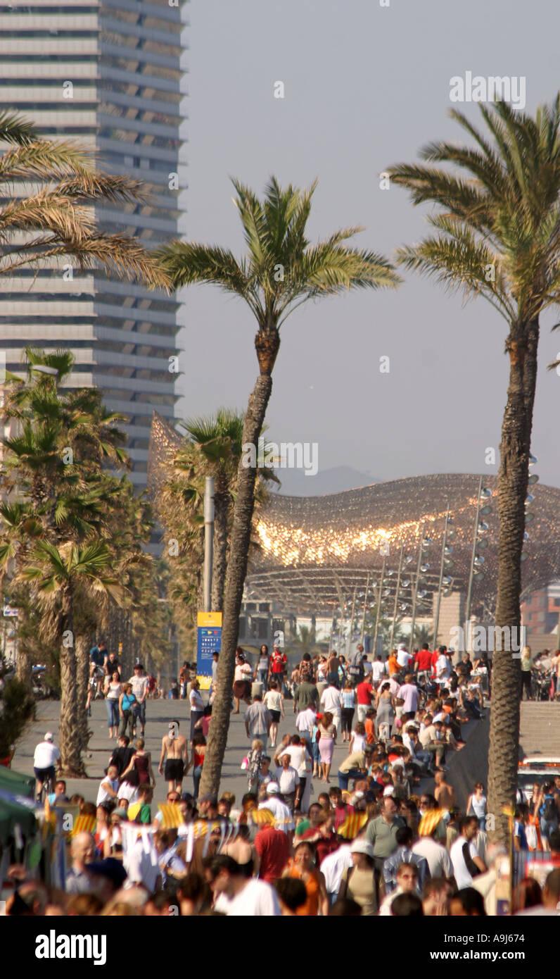 Spain Barcelona beach Platja de la Barceloneta promenade modern architecture by Frank gehry - Stock Image