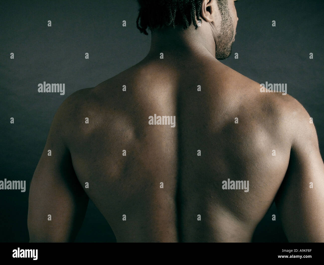 Muscular back of a young African American man portrait Stock Photo ...