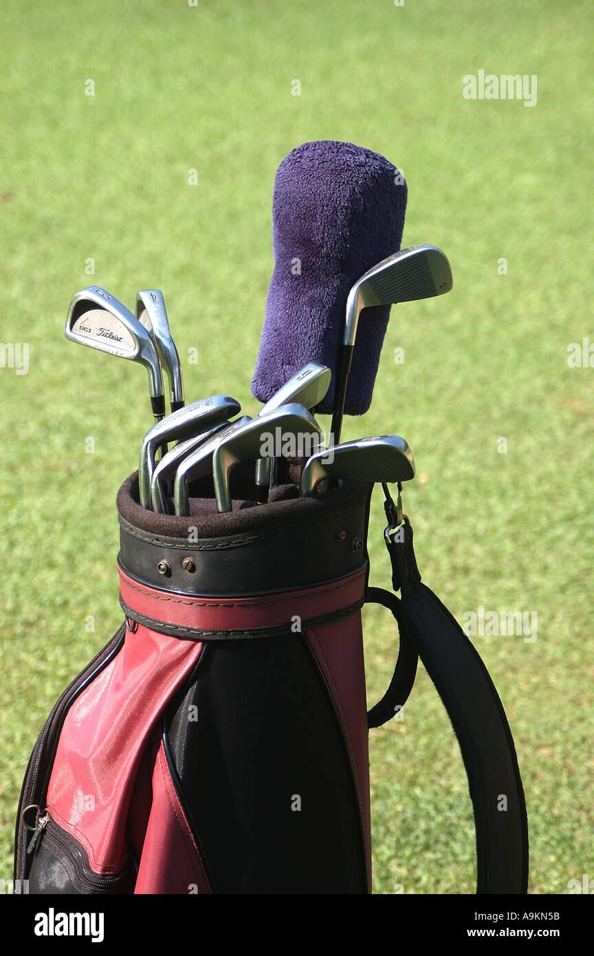 Golf Clubs nine in Clubs Carry bag against green grass Chembur Bombay  Mumbai Maharashtra India Asia Asian