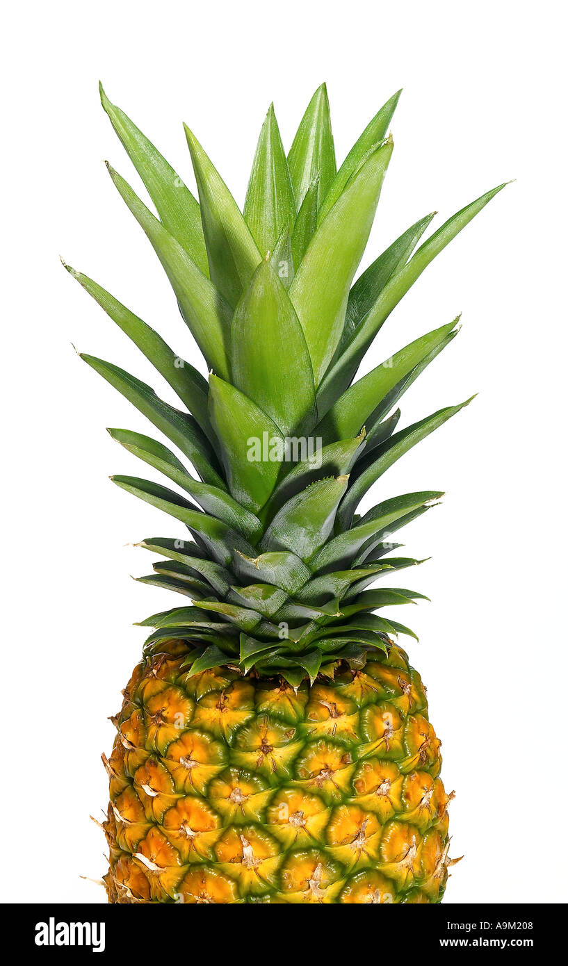 pineapple - Stock Image