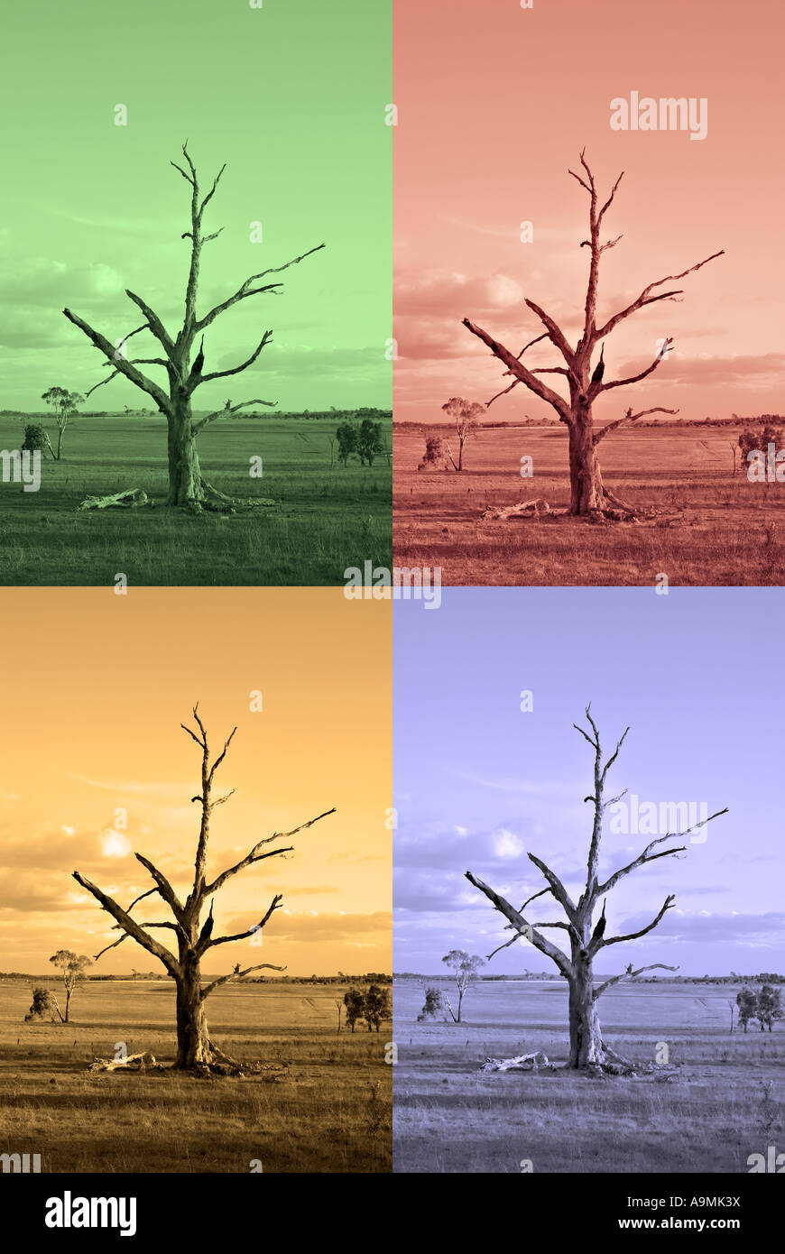 an old farm with dead tree rendered to represent the four seasons - Stock Image