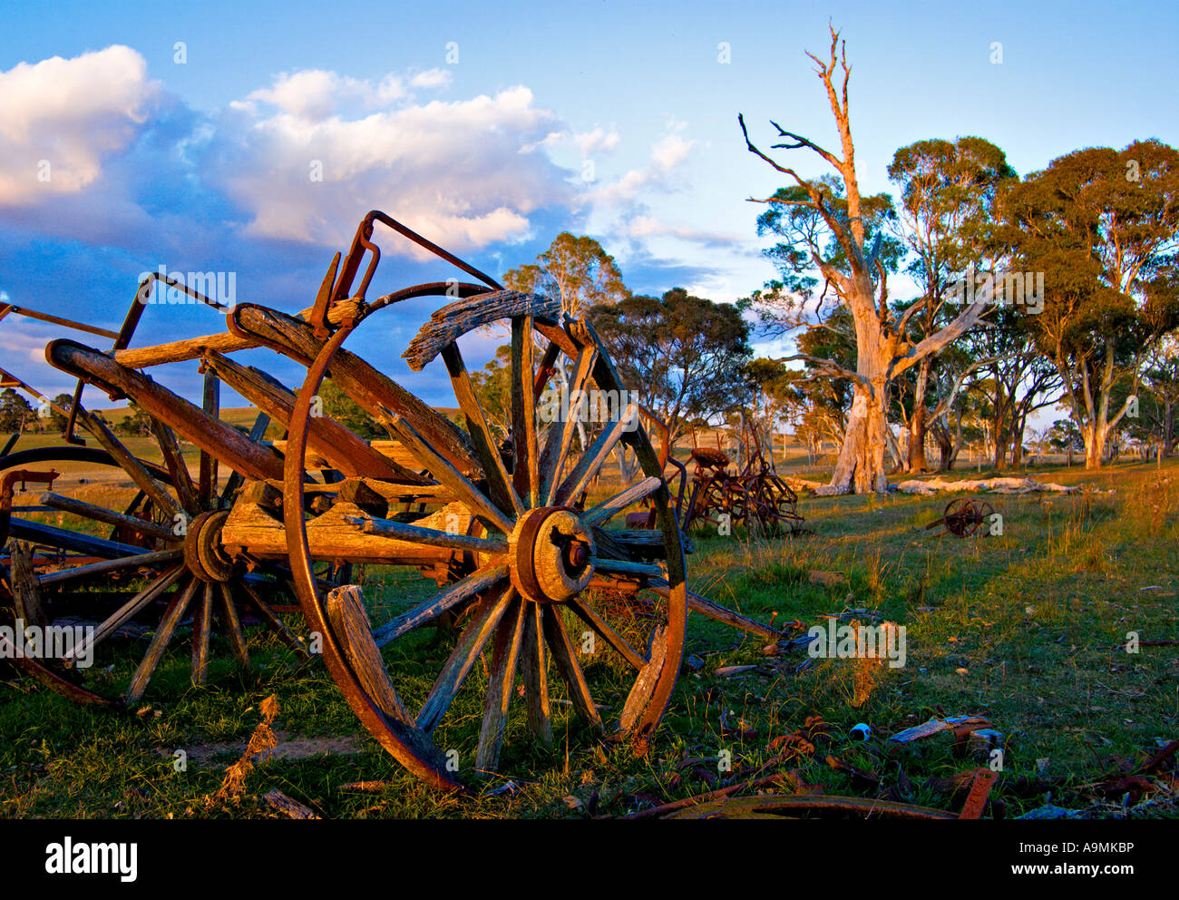 a nice bright image of an old cart left to rot on the farm - Stock Image