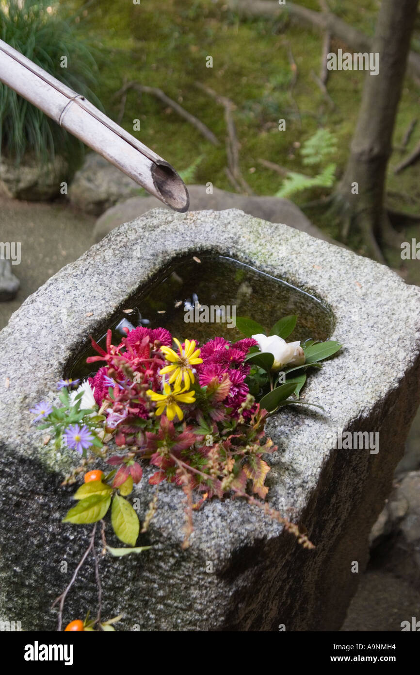 Stone wash basin 'tsukubai' at the garden at Korin-in, which is a subtemple of Daitokuji Temple, Kyoto, Japan - Stock Image