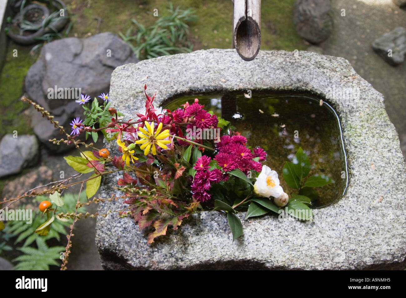 Purification fountain 'tsukubai' at the garden at Korin-in, which is a subtemple of Daitokuji Temple, Kyoto, Japan - Stock Image