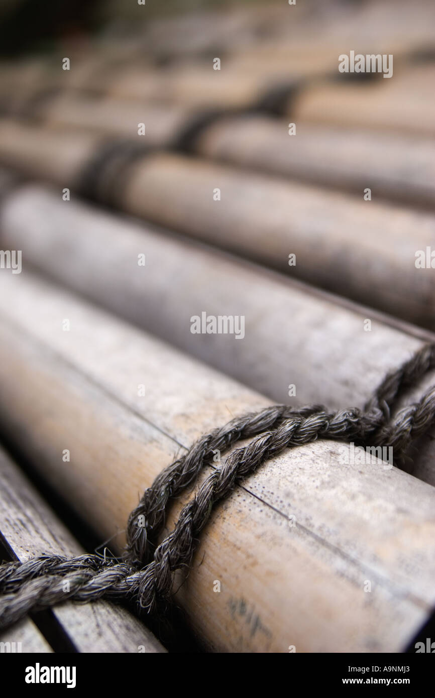 Bamboo detail Zuiho in garden which is a subtemple of Daitokuji Temple in Kyoto Kansai Region Japan - Stock Image