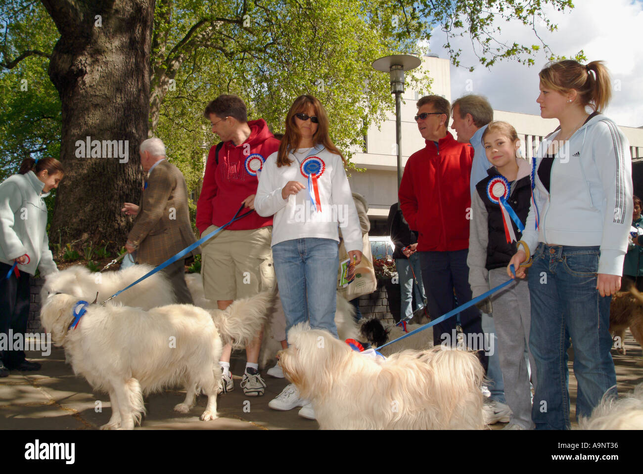 DOG OWNERS IN A CHARITY ORGANIZED WALK REGENTS PARK LONDON MAY 2005 - Stock Image