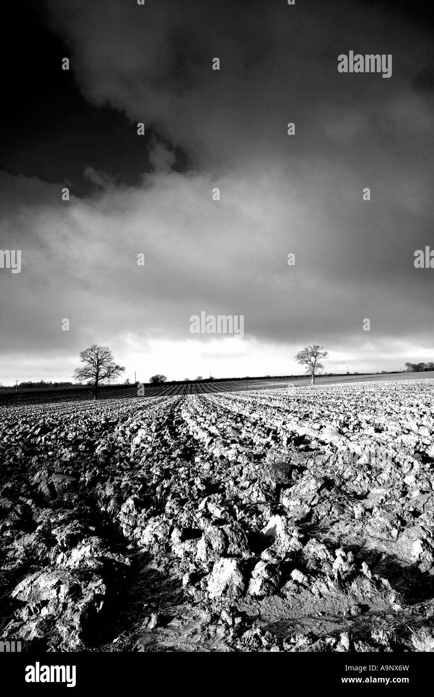 black and white landscape of ploughed fields and a dramatic cloudy winter sky - Stock Image