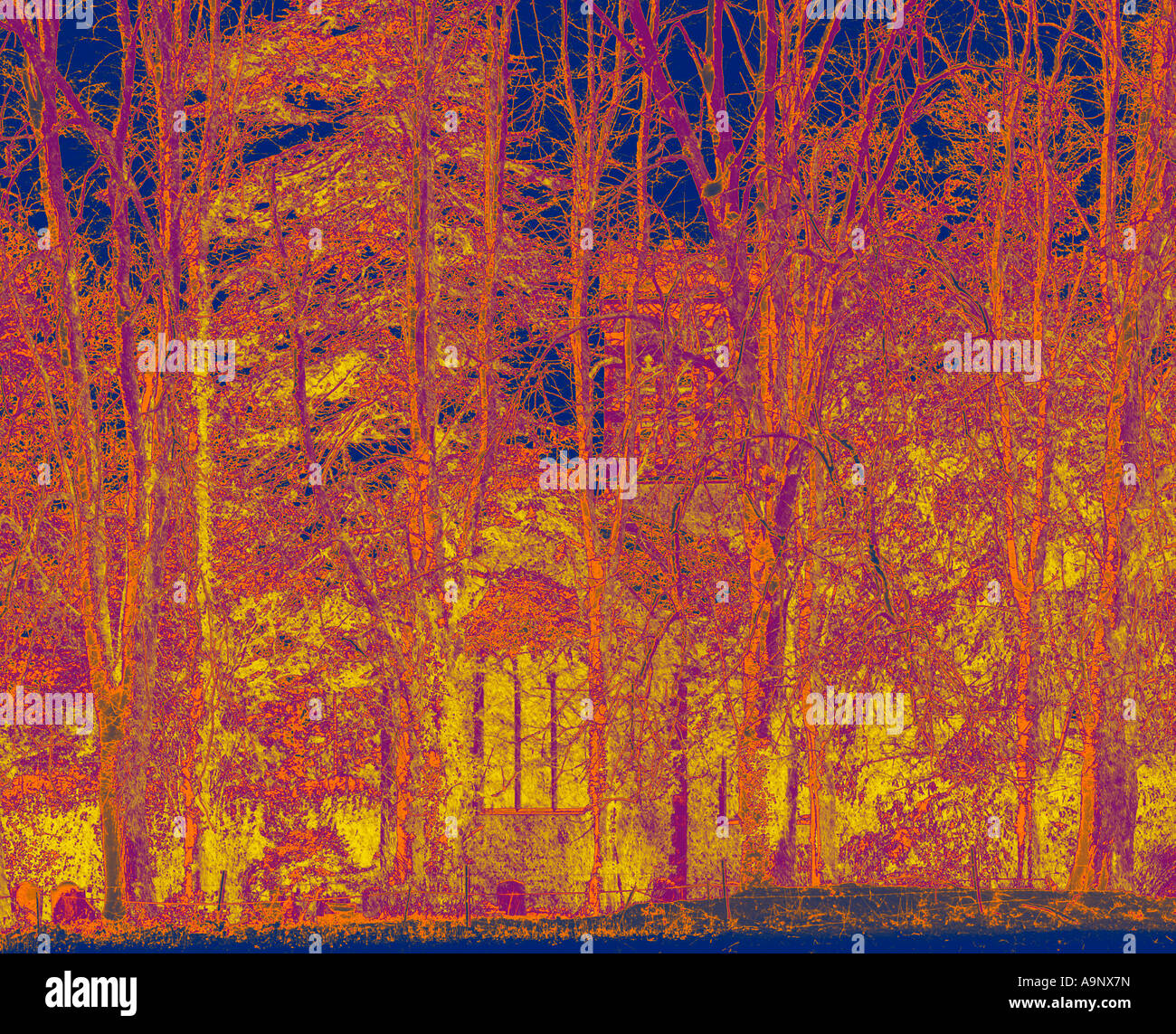 abstract solarised image of rural church through trees in the snow Stock Photo