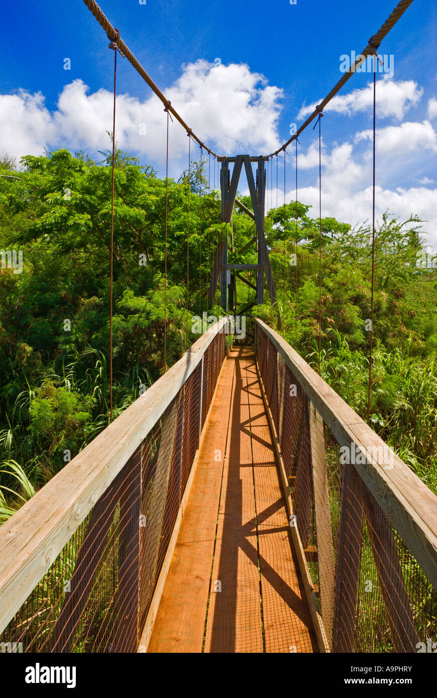 The Hanapepe Swinging Bridge Hanapepe Island Of Kauai Hawaii