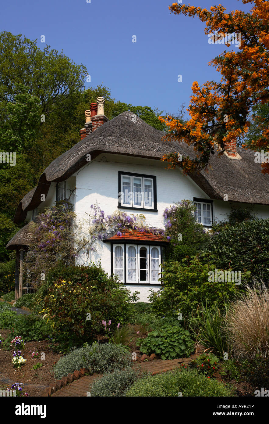 Beehive Cottage, New Forest, Hampshire, England - Stock Image