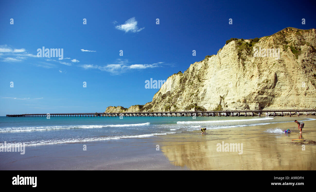 beach and Wharf at tolaga bay East cape - Stock Image