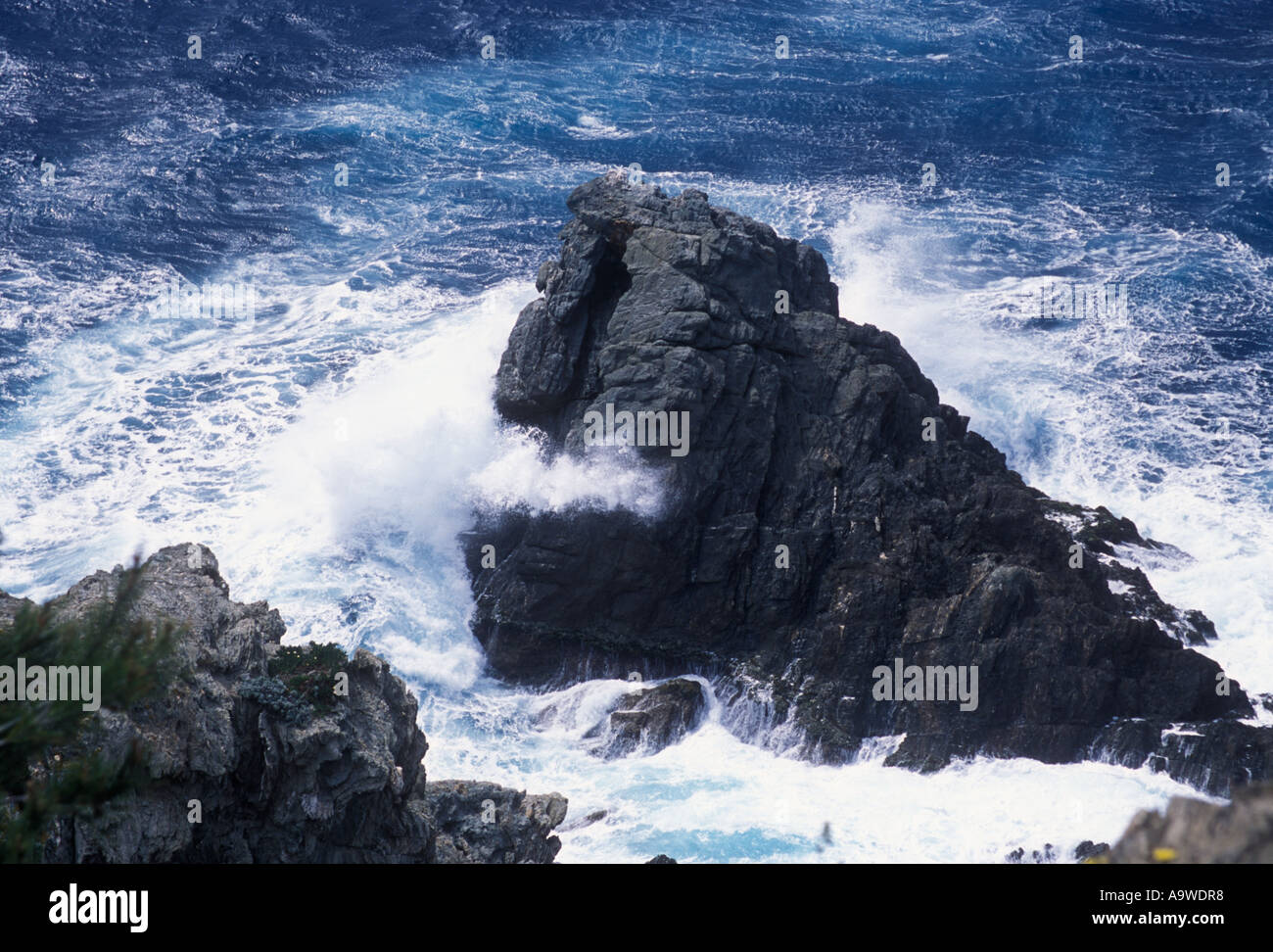 Rocky coast at Cap d Arme Porquerolles Hyeres Islands Cote d Azur Var France Stock Photo