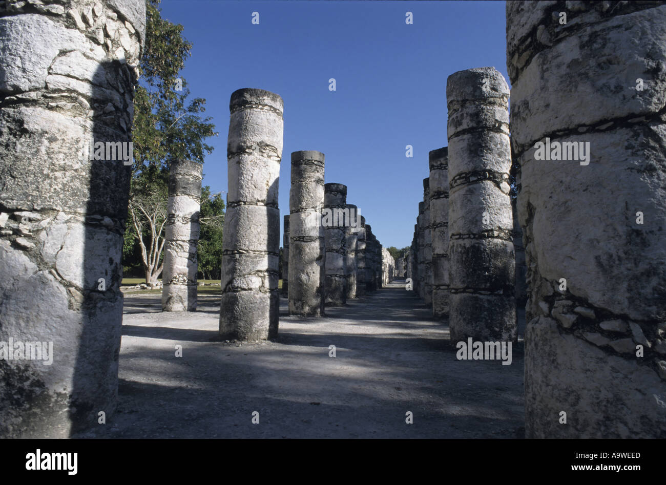 Chichen Itza, Mexico -  The Group Of The Thousand Columns - Stock Image