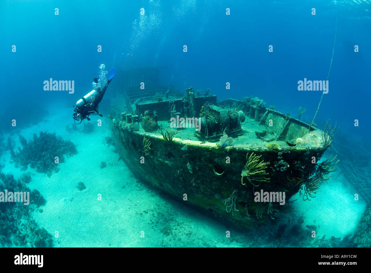 Shipwreck of the Willaurie a 150 foot island freighter as seen in its underwater environment by a scuba diver - Stock Image