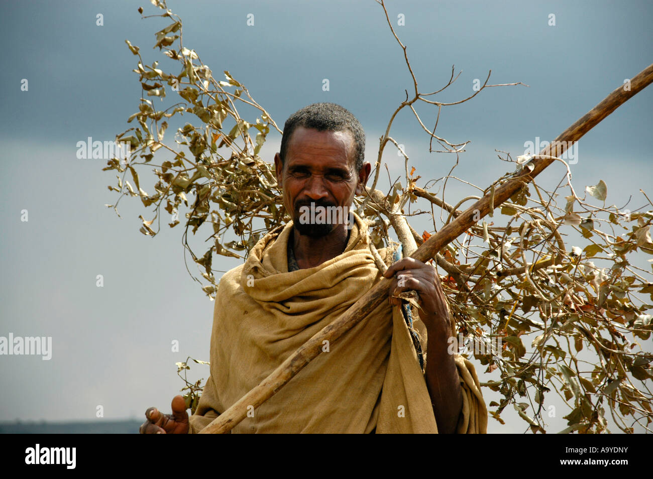 Countryman wearing a cape and a stick carries firewood Ethiopia Stock Photo